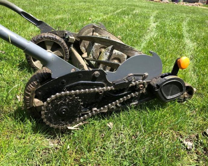 Finest Electric Reel Mowers - SuperiorTopList